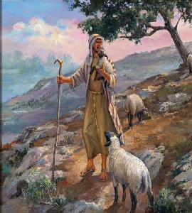 shepherd1